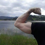 Bicepsbro